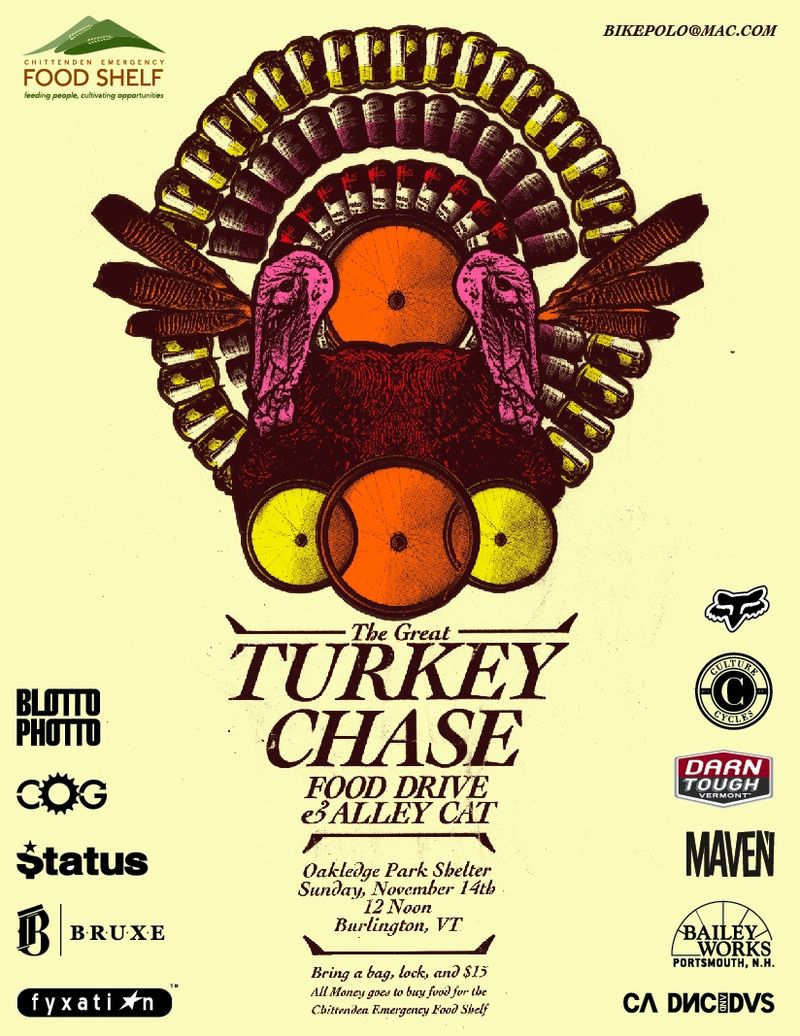 Turkey_Chase_Web