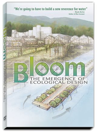 BLOOM2_DVD_3DArt