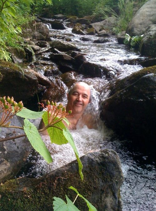 Sorrell in a Waterfall
